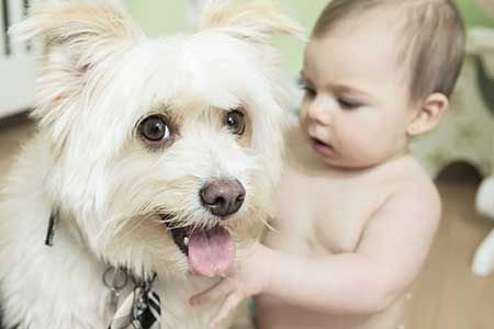 baby-and-dog-2jpg